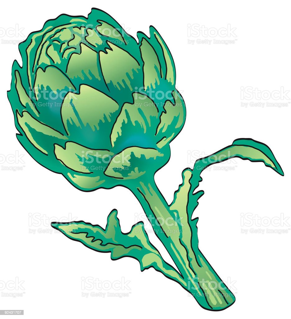 Artichoke plant isolated on white royalty-free stock vector art