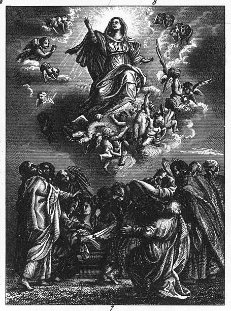 illustrazioni stock, clip art, cartoni animati e icone di tendenza di assunzione di st. mary di rubens - ferragosto