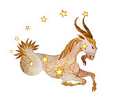 Astrological sign of the zodiac Capricorn