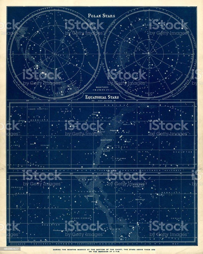 Astronomia gráfico-Polar e estrelas Equatorial - ilustração de arte em vetor