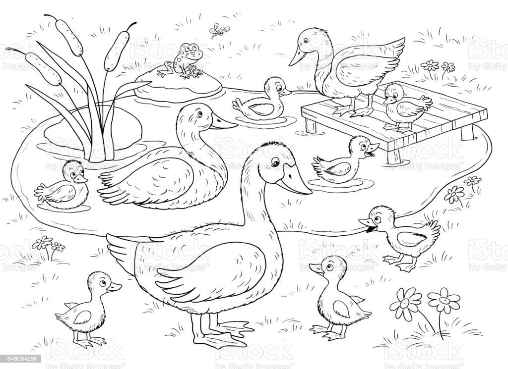 Family Of Cute Ducks And Geese Illustration For Children Coloring