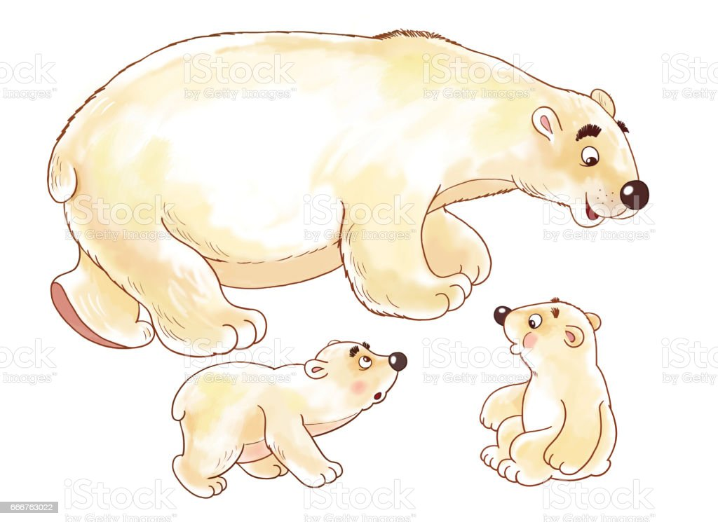 at the zoo cute arctic animals polar bear coloring page illustration