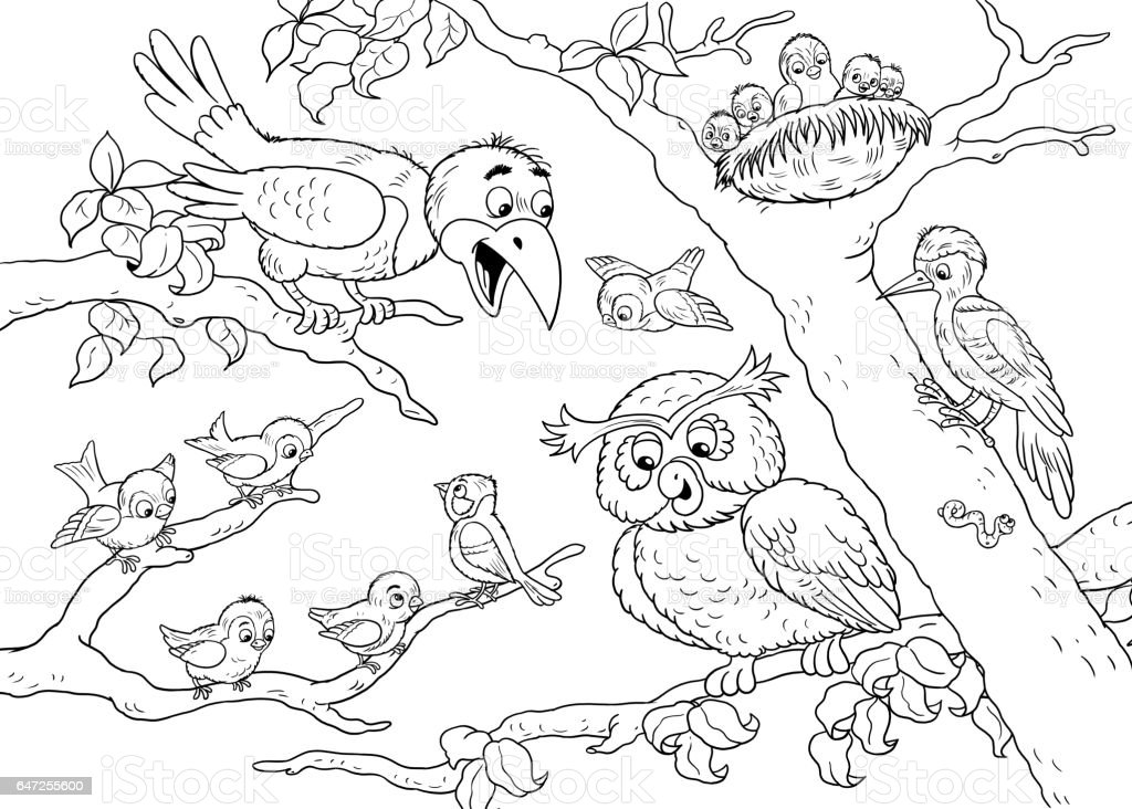 at the zoo cute woodland animals forest birds illustration