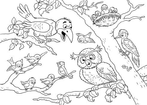 Hayvanat Bahçesinde Sevimli Orman Hayvanlar Orman Kuşları çizim çocuklar Için Boyama Sayfası Stok Vektör Sanatı Animasyon Karakternin Daha Fazla