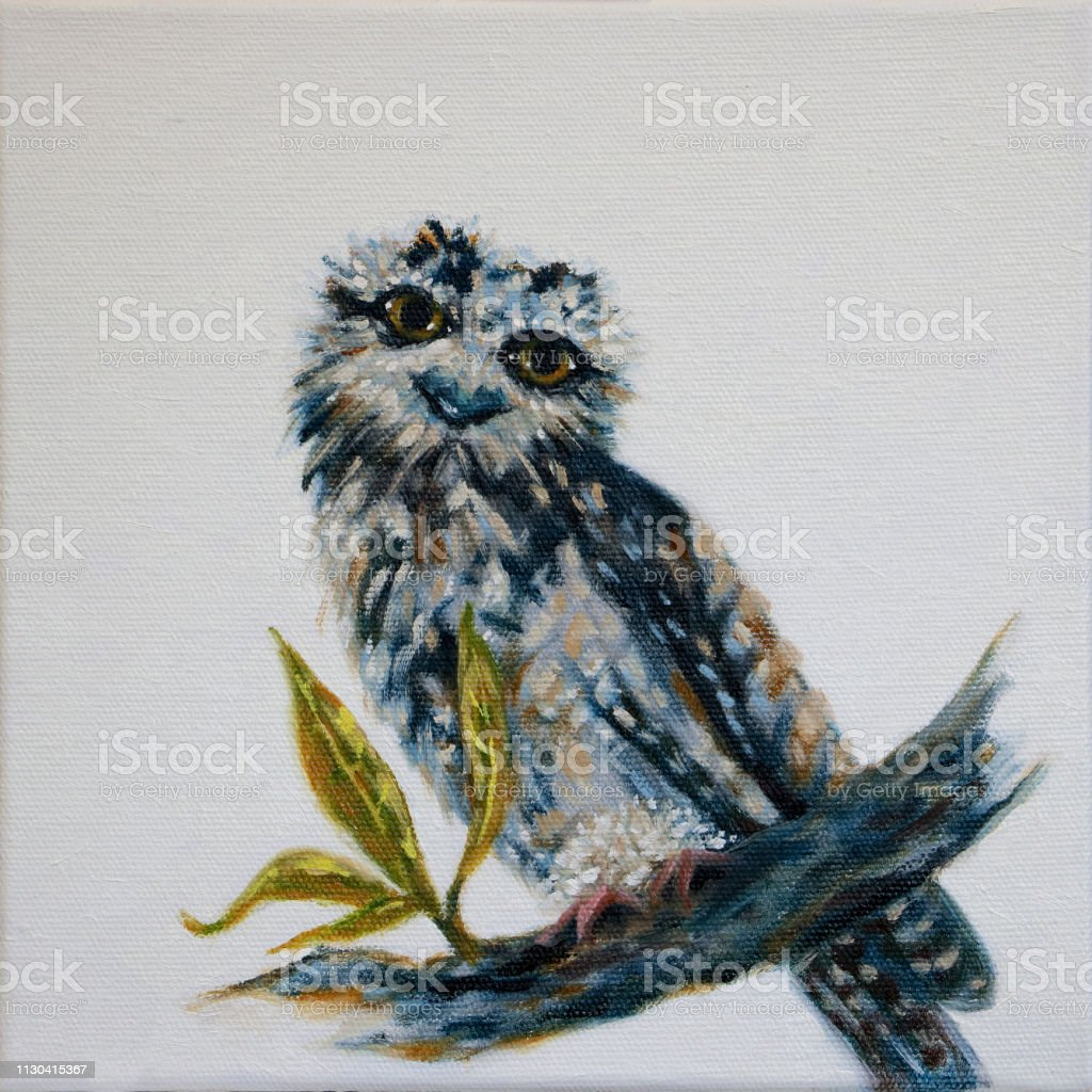 Australian Tawny Frogmouth Oil Painting vector art illustration