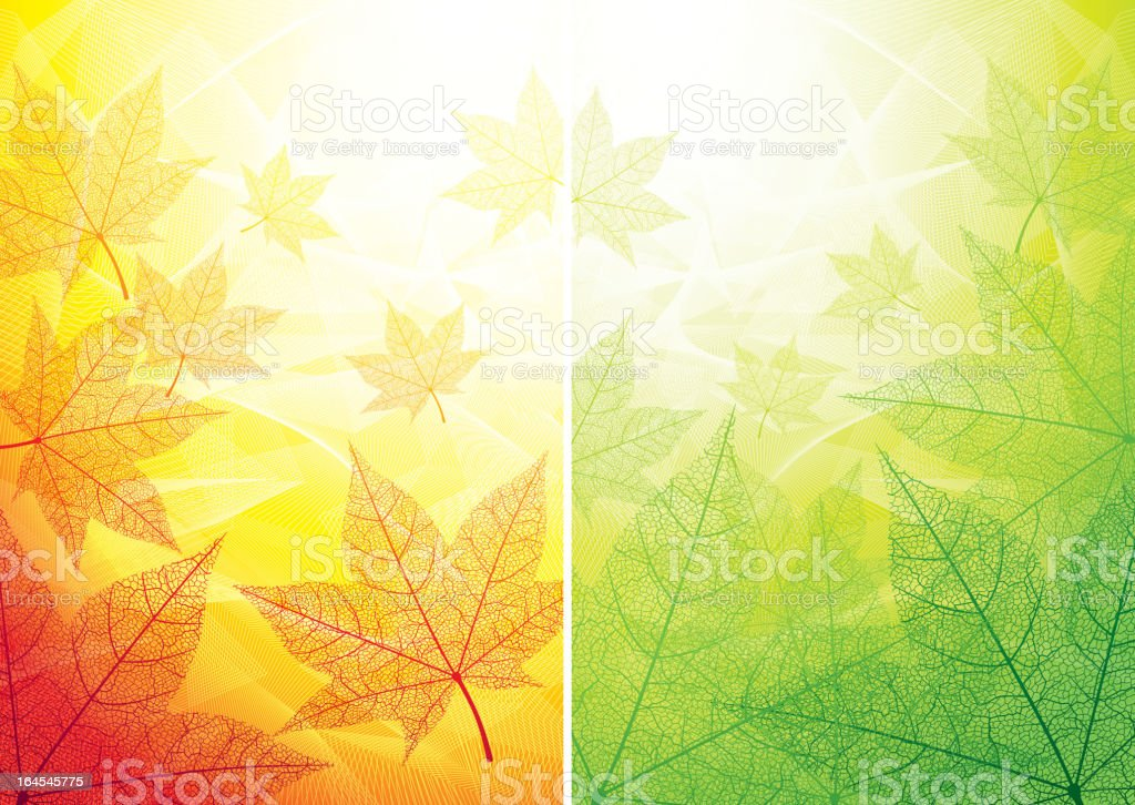 Autumn and summer backgrounds vector art illustration