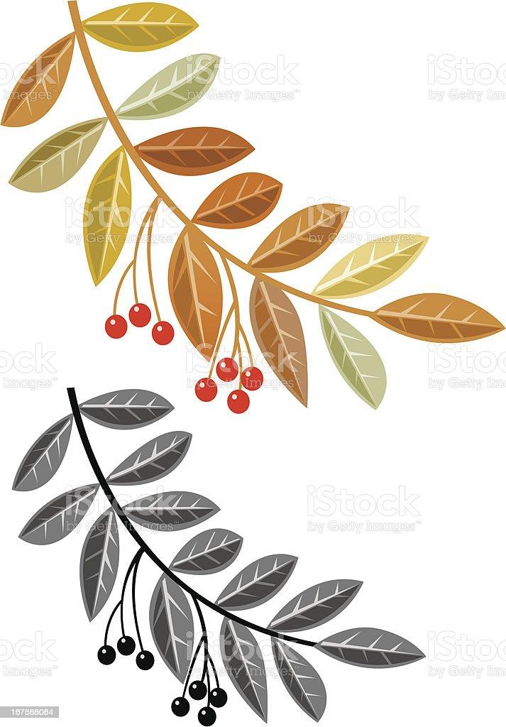 Autumn branch vector art illustration