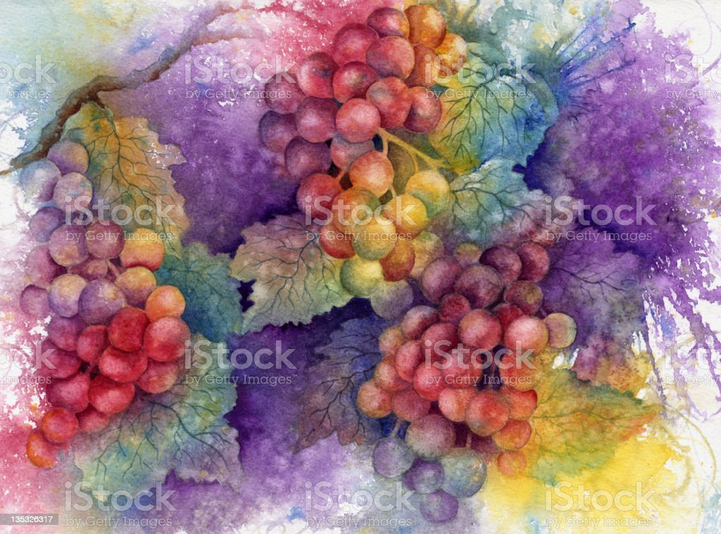 Autumn Grapes vector art illustration