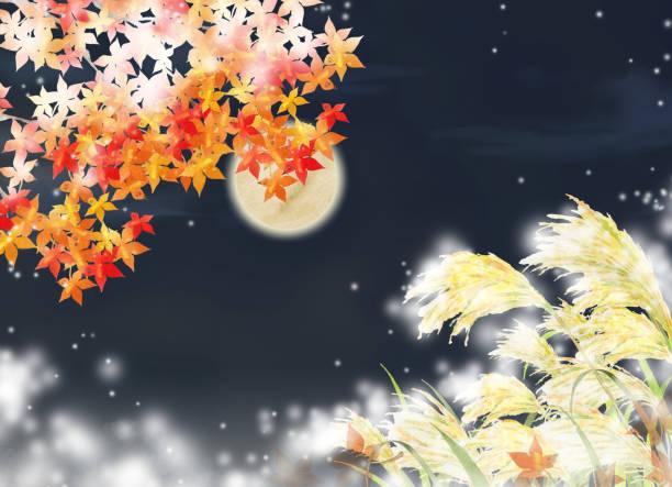illustrazioni stock, clip art, cartoni animati e icone di tendenza di autumn landscape with full moon - miscanthus sinensis