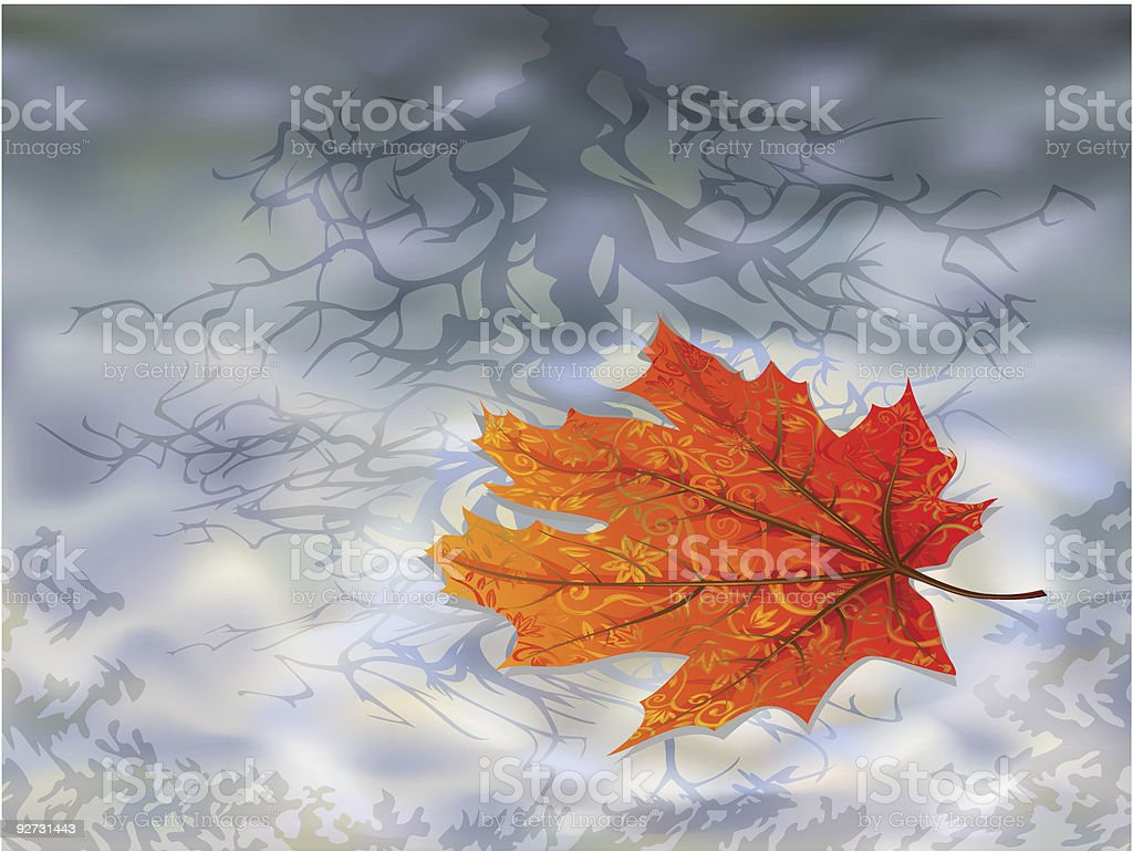 Autumn leaf on water vector art illustration