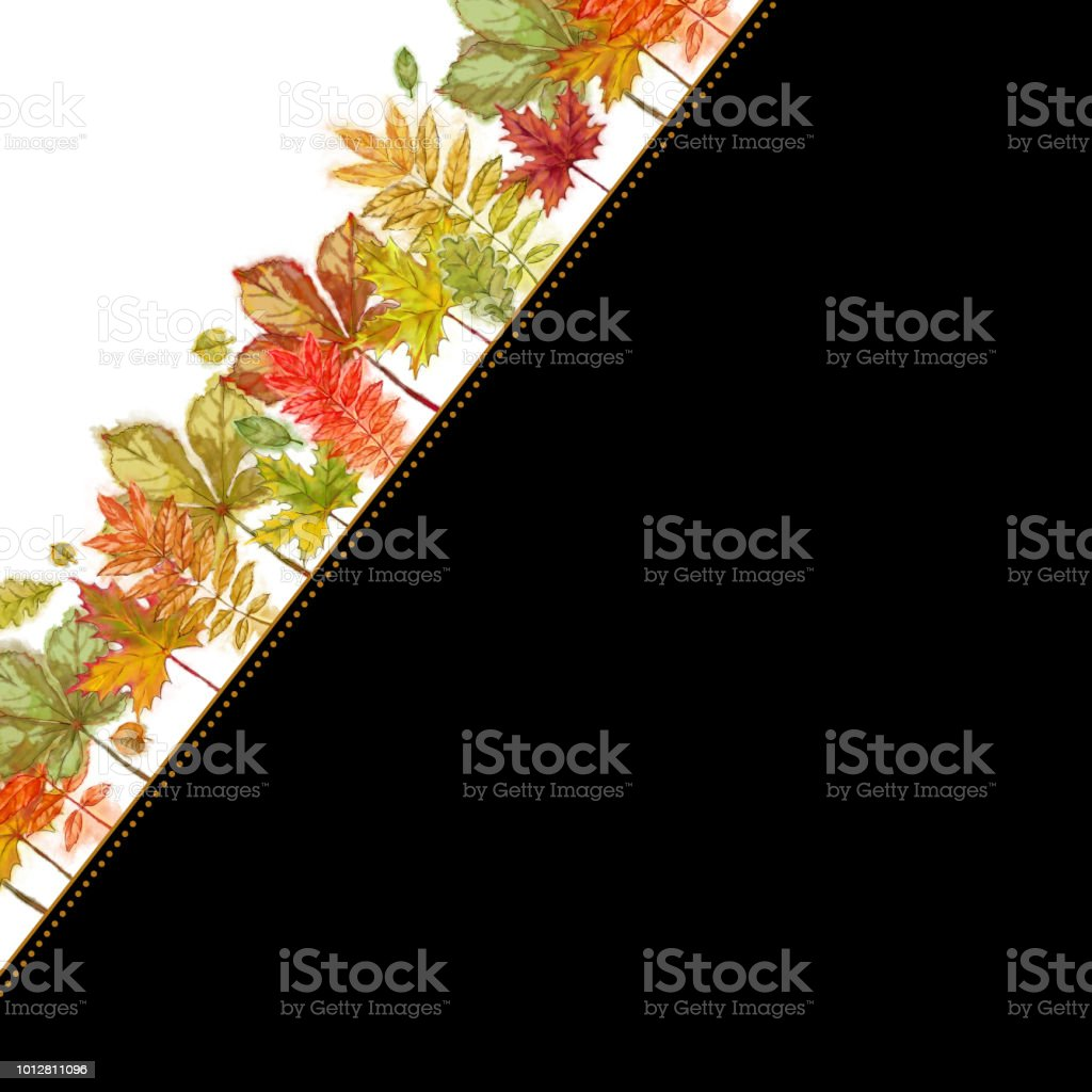 autumn leaves angled template isolated on white background and with