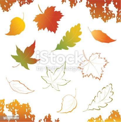 Vector autumn leaves - design elements.