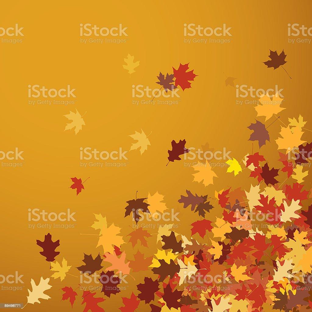 autumn leaves royaltyfri autumn leaves-vektorgrafik och fler bilder på bild