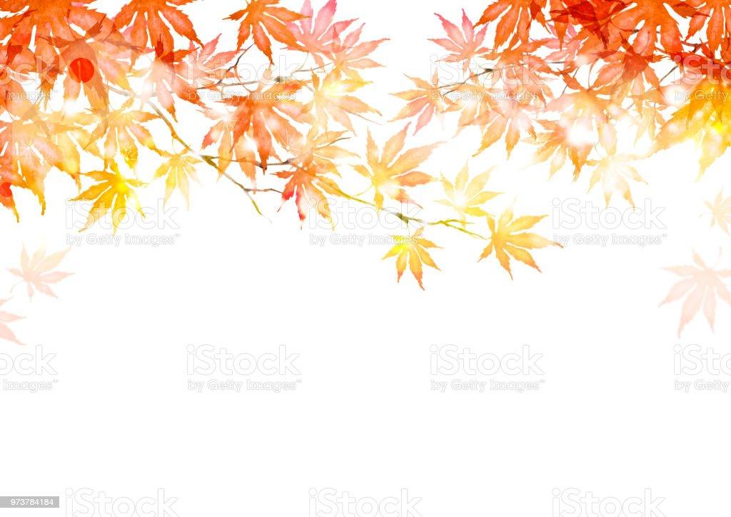 秋の落ち葉 ベクターアートイラスト