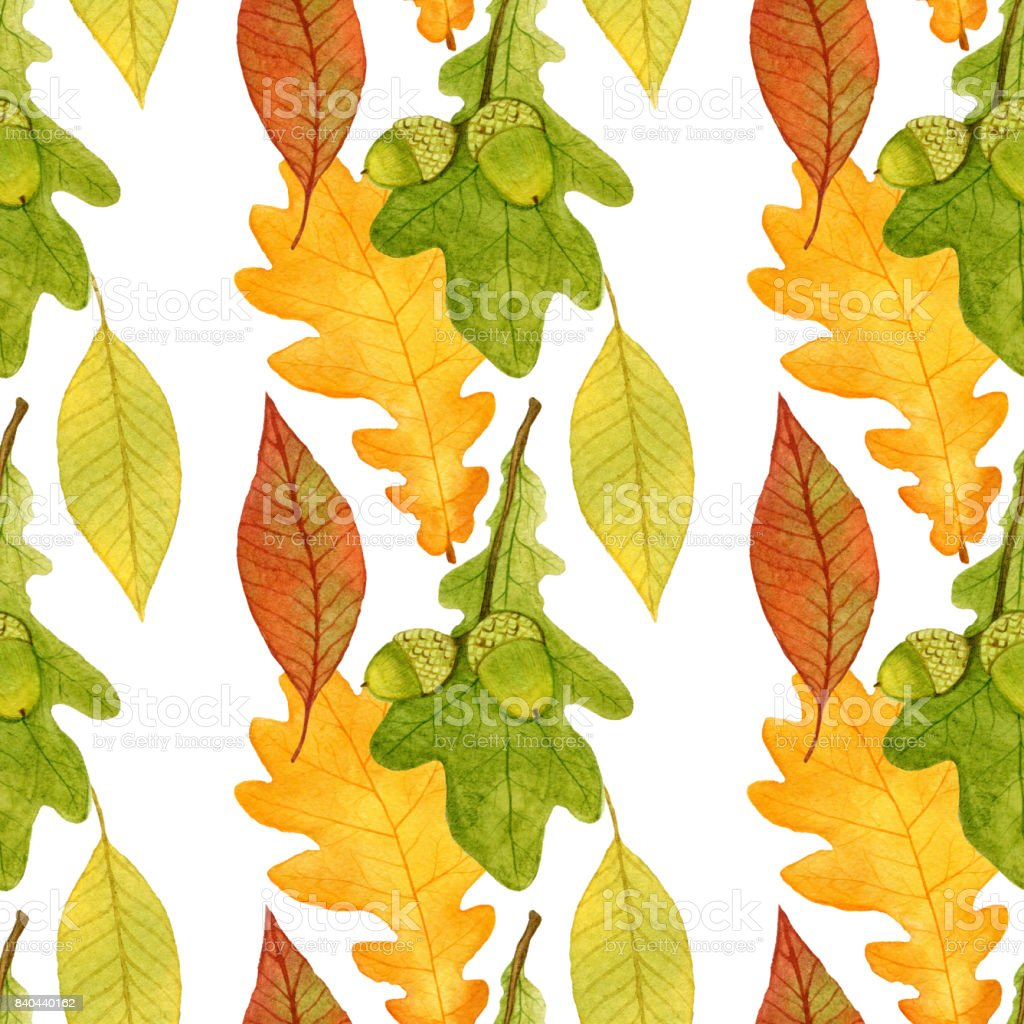 autumn seamless pattern with acorns and oak leaves watercolor design