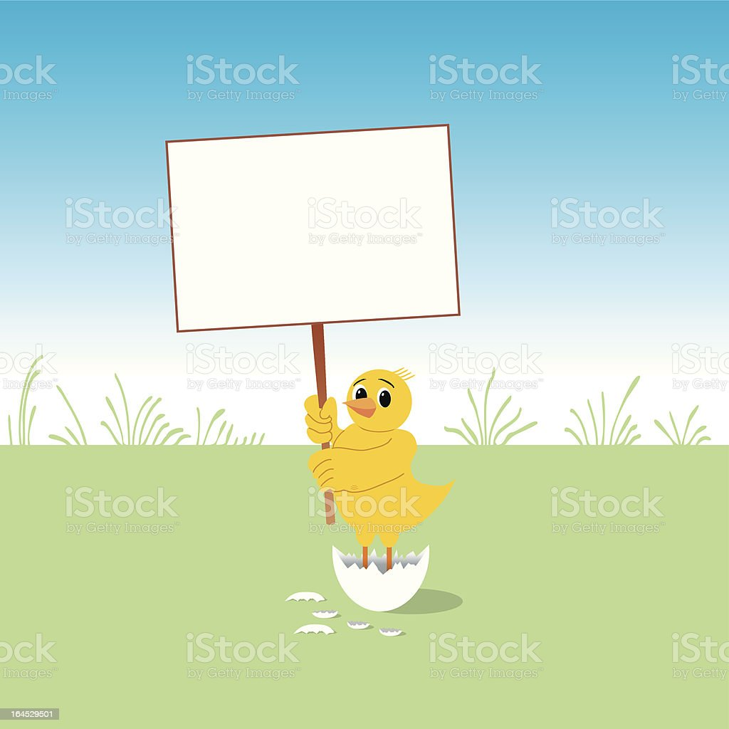 Baby chicken has a message royalty-free stock vector art
