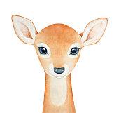 Baby Deer character portrait.