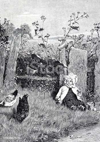 istock Baby is sitting in the garden with the chickens 1250667570