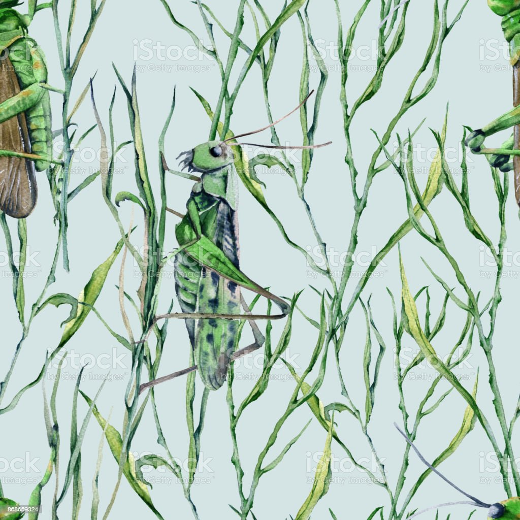 Background of grasshoppers in the grass. Seamless pattern for fabric. vector art illustration