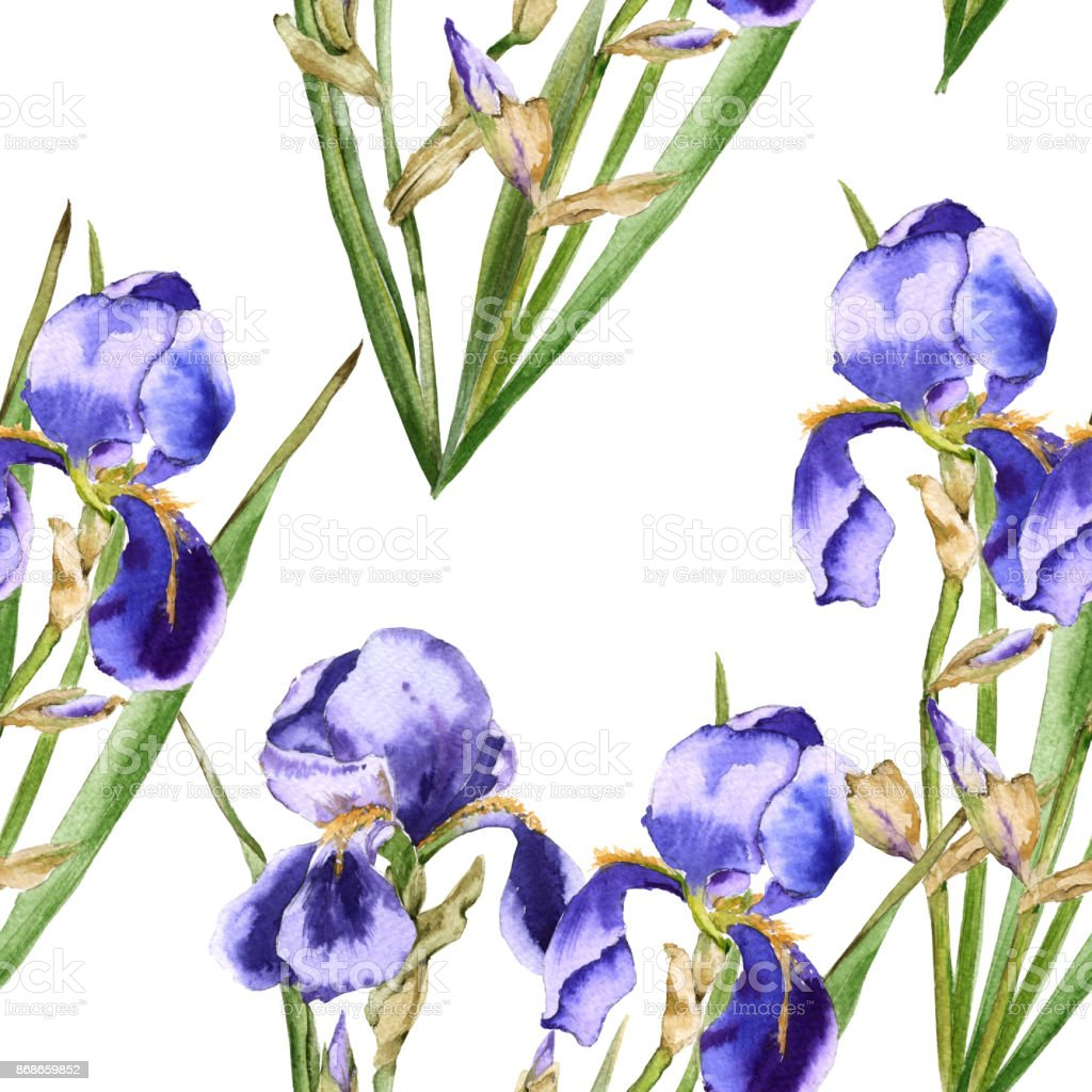 Background of iris flowers. Seamless pattern for fabric. vector art illustration