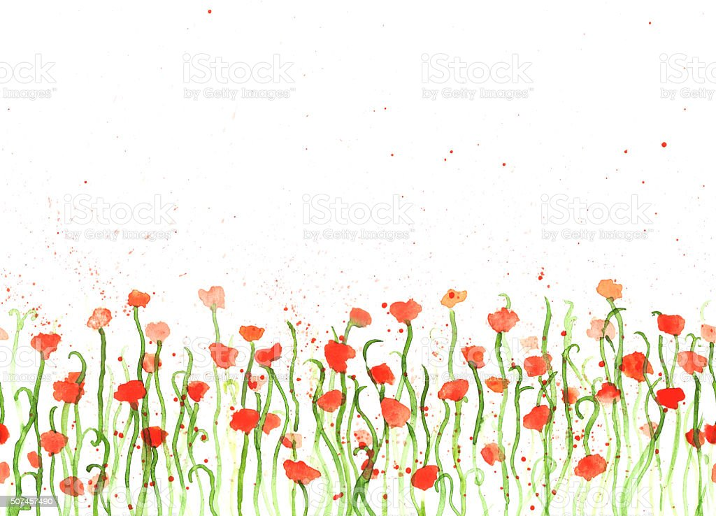 Background with hand drawing watercolor red poppies on white vector art illustration