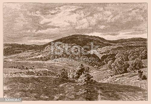 istock Bakony is a mountainous region in Transdanubia, Hungary 1306883842
