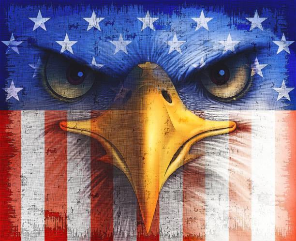 398 Bald Eagle American Flag Illustrations Clip Art Istock