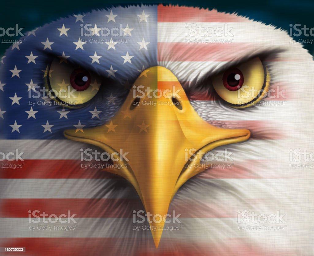 bald eagle with USA flag vector art illustration