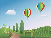 Balloons over a Vineyard