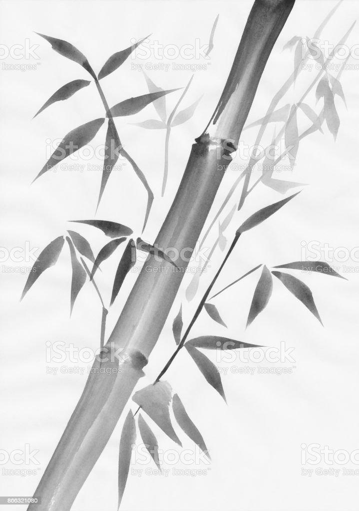 Bambus Und Blatter Malen Studie Stock Vektor Art Und Mehr Bilder Von