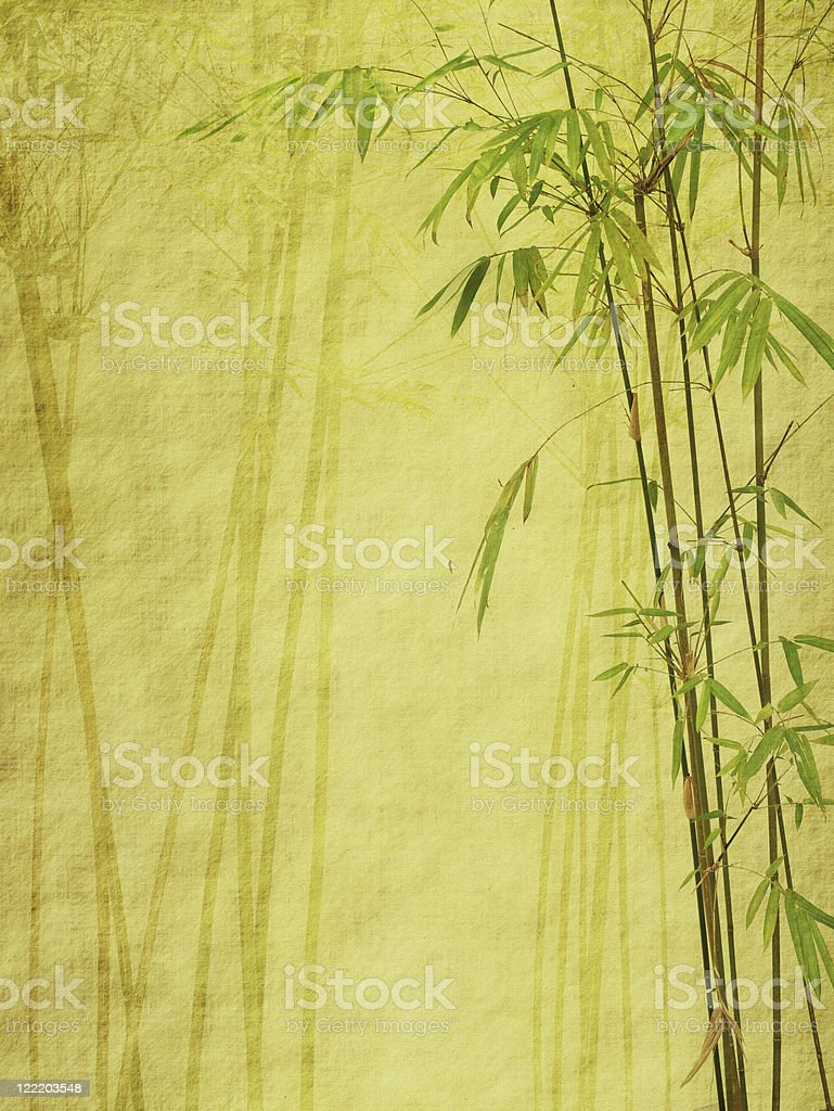 bamboo on old grunge paper texture background royalty-free bamboo on old grunge paper texture background stock vector art & more images of bamboo - plant