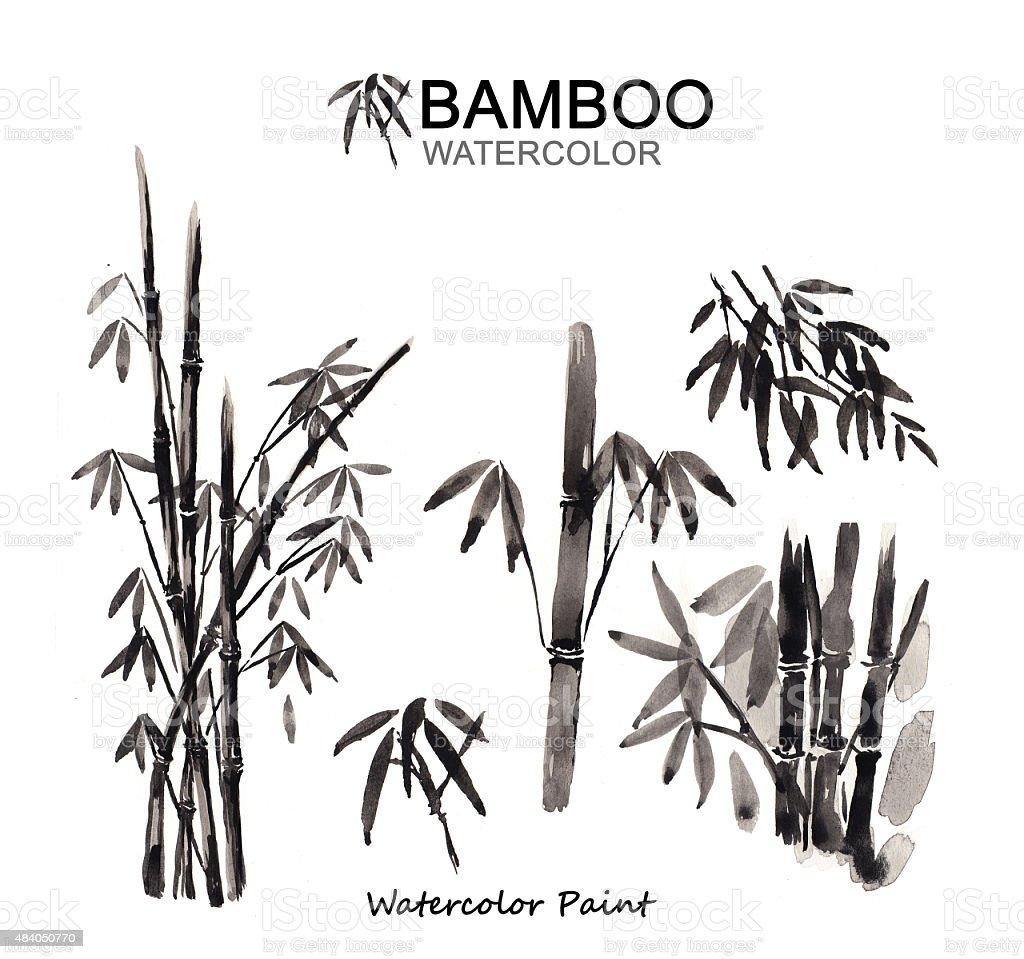 Bambus Farbe Aquarell Malen Hoher Auflosung Stock Vektor Art Und