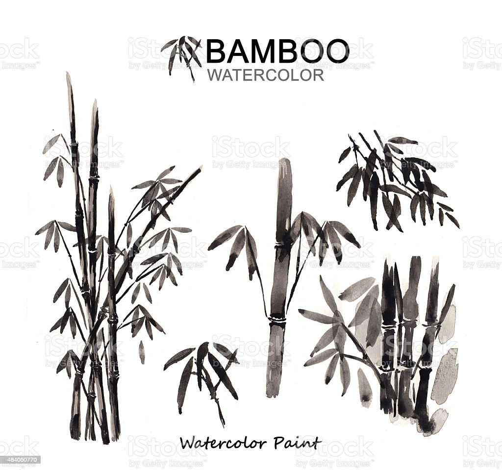 Bamboo paint, Watercolor paint high resolution vector art illustration
