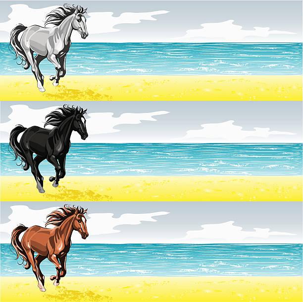 Royalty Free Horses Running On Beach Clip Art, Vector ...