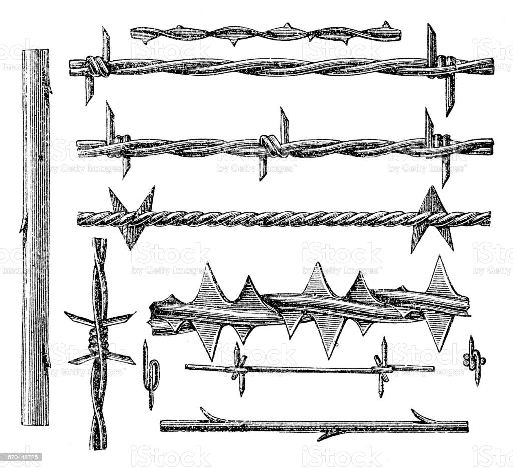 Barbed Wire Stock Vector Art & More Images of Antique 670448726   iStock