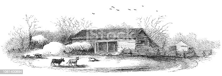 Barn on a farmstead in rural Illinois, United States of America (circa mid 19th century). Vintage etching circa mid 19th century.
