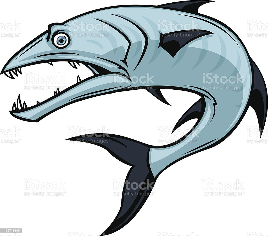 royalty free barracuda clip art vector images illustrations istock rh istockphoto com barracuda clipart barracuda clip art free