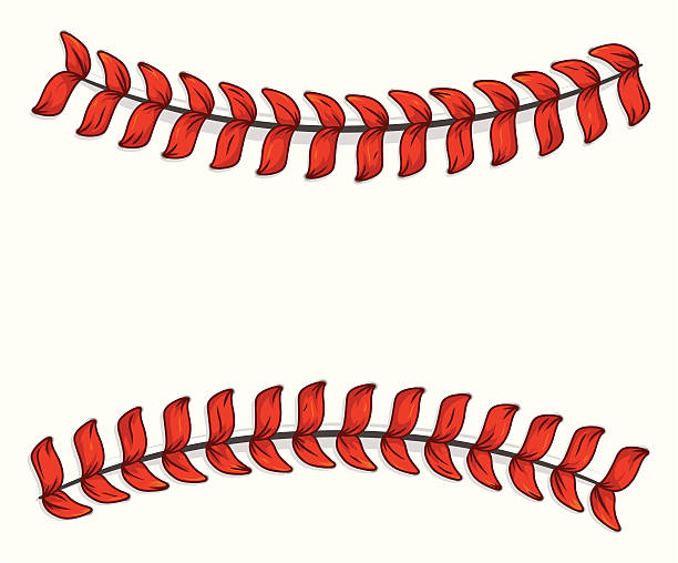 Baseball Laces vector art illustration