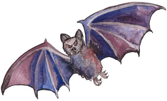 Bat. Halloween. Vampire bat hand painted watercolor illustration
