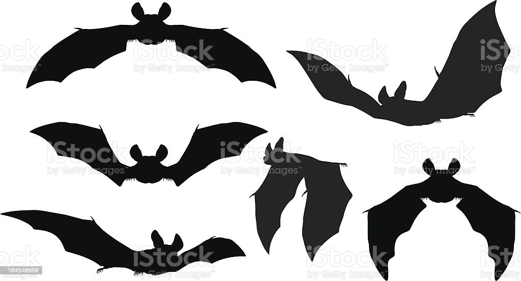 Bats Silhouettes vector art illustration