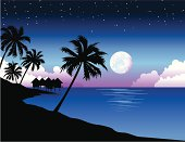 Vector illustration of the beach at night with palm trees and bungalows
