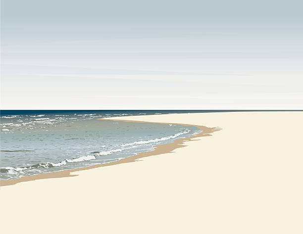 Beach tropical shore with waves vector art illustration