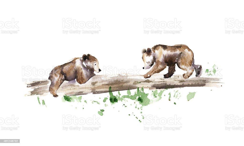 Bear cubs on a fallen tree, Watercolor illustration vector art illustration