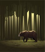 Black bear wandering through a woodland clearing. Vector illustration with a hi-res .jpg.
