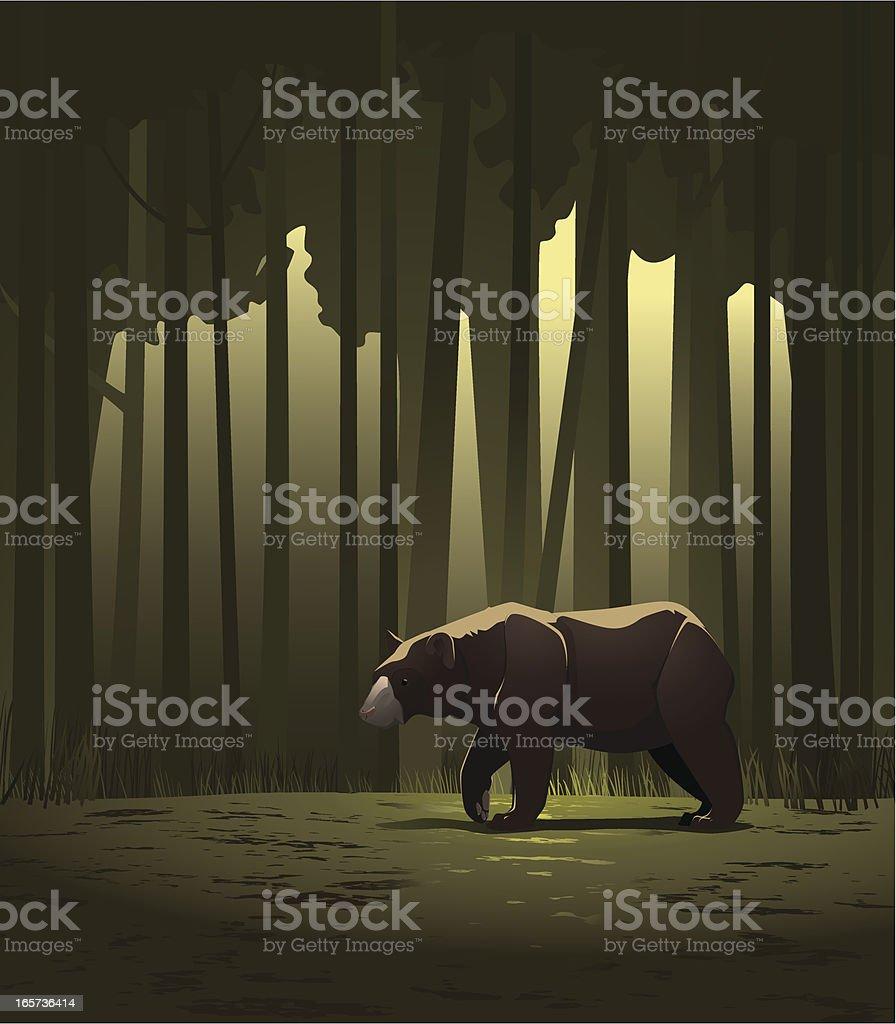 Bear in a forest vector art illustration
