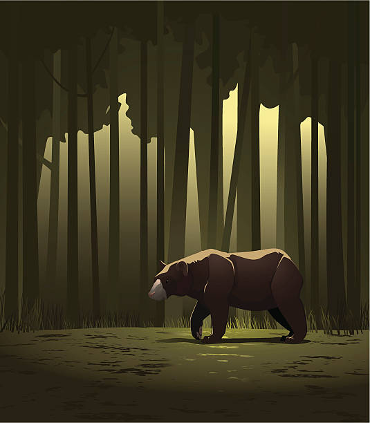 bear in a forest - hibernation stock illustrations, clip art, cartoons, & icons