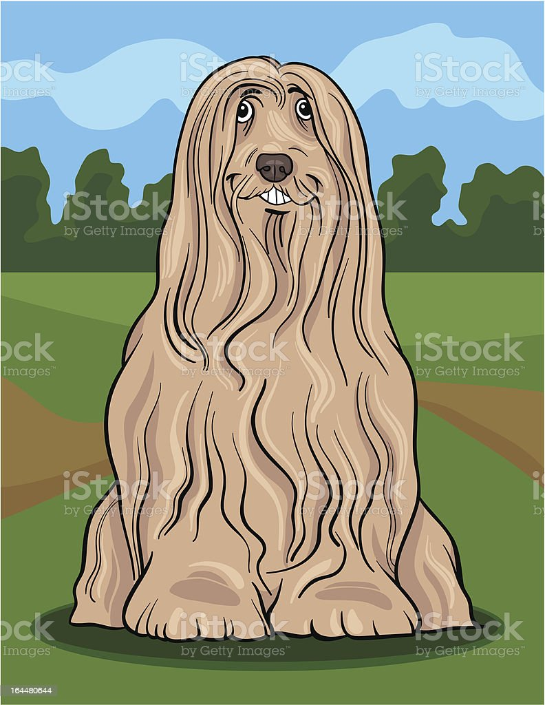 bearded collie dog cartoon illustration vector art illustration