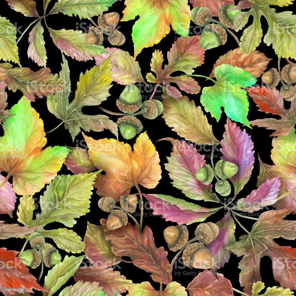 Siyah Arka Planda Guzel Sonbahar Yapraklari Dikissiz Cicek Deseni