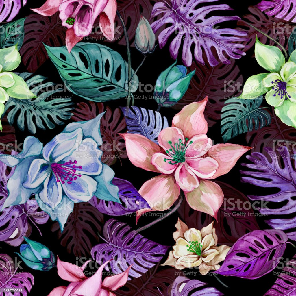 Beautiful Columbine Flowers Or Aquilegia And Exotic Monstera