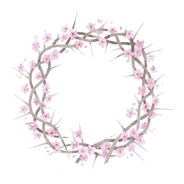 Beautiful elegant watercolor flowering blooming crown of thorns resurrection illustration vector art illustration